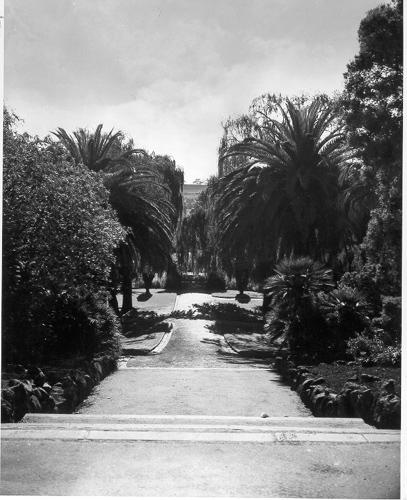 Maribyrnong Victoria: Miscellaneous:1955. Footscray Park