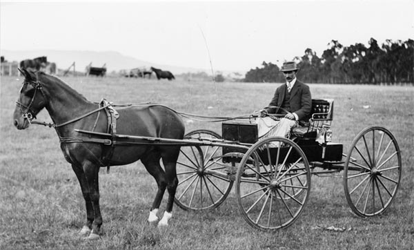 nillumbik historical society unknown horse drawn carriage